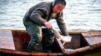 安徽农民用鱼鹰捕鱼 引村民围观 3小时捕200斤