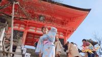 日本京都最受欢迎的寺庙, 游客都穿上了和服, 好像回到古代一样