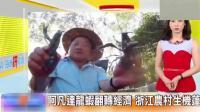 台湾媒体: 大陆农村发展越来越富裕, 厉害了!