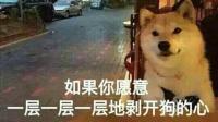 当你想跟女友亲近一下时…总觉得有一条狗的距离