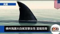 大白鲨攻击女游客, 当场见骨!