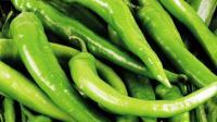 还在那么吃青椒吗? 这样吃比以前健康十倍