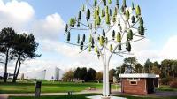 农村再也不用交电费? 种上这棵树, 一年13500度电免费用!