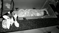 深夜女子独自睡在宾馆值班, 突然闯入一男子, 监控拍下可怕一幕