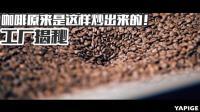 带你见识咖啡全套生产线! VLOG² 18