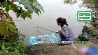 钓鱼野钓饵料钓鱼技法(1)