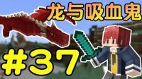 石化凋零+魔法升级※我的世界※龙与吸血鬼的世界 Ep.37