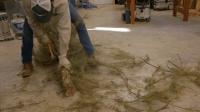 土豪技术宅又出手啦, 砍一棵树做一把木锤子