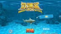周姐解说饥饿鲨进化03期礁鲨厉害了