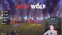 ★野狼★Wild Wolf《籽岷的新游戏直播体验》