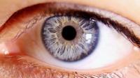 你眼前总漂浮的黑点是什么? 科学解释答案后, 解开我心中多年疑惑