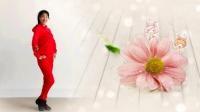 阿采广场舞《触不到你的温柔》简单32步