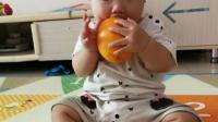 兔妹妹吃橙子