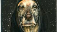 彩铅画动物教程—狗狗毛发质感的处理 4