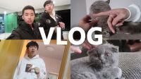 上海历险记#1(VLOG)