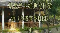 《斯里兰卡经典七日游》第4集 杭州的高远征 2018.02.03