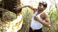 印度养蜂人徒手将蜜蜂塞进背心