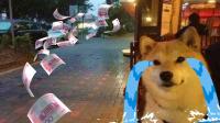 第158集:单身狗危机来袭要交税?
