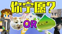你宁愿成为猫还是史莱姆【我的世界】Minecraft 小游戏地图 你宁愿?