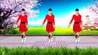 河北青青广场舞《你不来我不老》