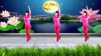 河北青青广场舞《对花》