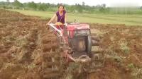 农村美女开拖拉机, 看完都服了!