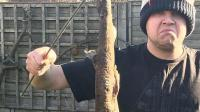 从天而落9公尺长猫鲨 把这对英国父子看傻了