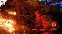 四川雅江森林火灾系人为造成