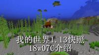 明月庄主我的世界1.13快照18w07C介绍海龟! 幻影蝠! 三叉戟! 等新生物, 新特性。