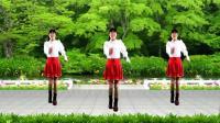 河北青青广场舞《家乡的姑娘真漂亮》附背面演示