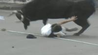 西班牙斗牛惨烈的一幕, 斗牛发狂