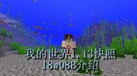 明月庄主我的世界1.13快照18w08B介绍: <・)))><<终于有实体鱼了QWQ