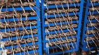 走进工厂, 带你见识一下电机线圈如何制造的