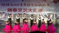 靖西市笫十届庆新春交谊舞联欢晚会, 华尔兹