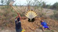哥哥和弟弟田埂边挖蛇, 突然洞里杀出一条眼镜蛇, 他们却这样做!