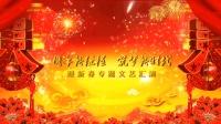 【单位案例】南方电网迎新春文艺汇演开场及过场视频
