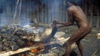 非洲又一个动物泛滥, 当地土著叫苦连天, 中国吃货: 需要帮忙么?