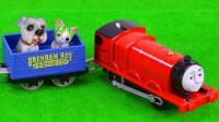 小火车带着大家去旅游
