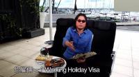 高晓松: 新西兰很开放, 你可以拿旅游签证过去打工, 而且它很欢迎