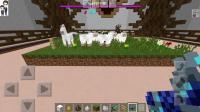 我的世界手游服务器小游戏#59: 草原是什么样子★速建大师★哲爷和成哥