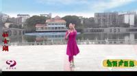 广场舞·仙女湖附动作教学