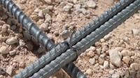 国外最新款扎铁丝工具, 这结绑的真紧实, 建筑工人的福音