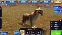 【肉肉】侏罗纪世界游戏949#我的袋剑虎!