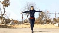 超动感舞曲《护花使者》32步 玫香广场舞原创