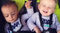 女子生下黑白双胞胎 被嘲: 肯定不是一个爹