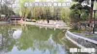 春风已度潼关: 西安市长乐公园春意渐浓!