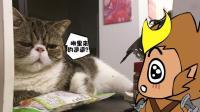 王者荣耀搞笑小动画: 二次元穿越事件