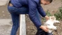 男子养猫, 竟然是用来擦鞋, 简直壕无人性!