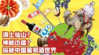 《品尝中国》第十三期 中国葡萄酒(上): 山东与新疆的葡萄酒庄