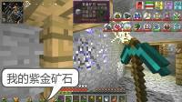 我的世界虚无世界13: 遗失矿道里的紫金石, 这是财富